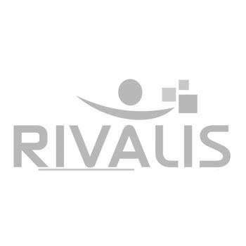 logo-rivalis-350px