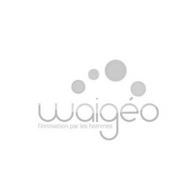 logo-waigeo-350px